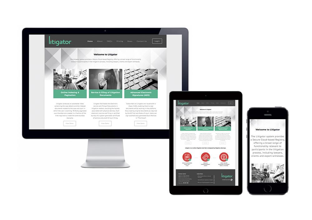Litigator Website
